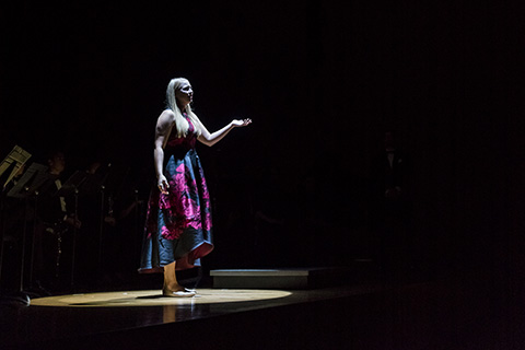 Vocalist performs in the spotlight on stage